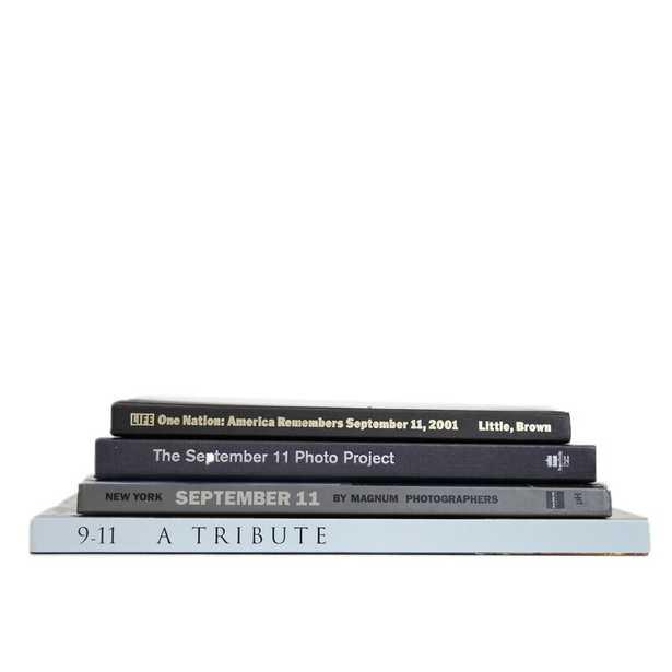 4 PIECE LIMITED AUTHENTIC DECORATIVE BOOK SET - Perigold