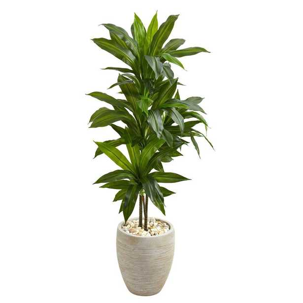 4' Dracaena Artificial Plant in Sand Colored Planter (Real Touch) - Fiddle + Bloom