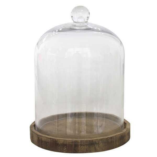 Donna Glass Dome Cloche - Wayfair