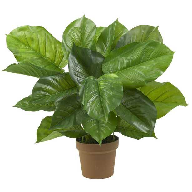 Large Leaf Philodendron Silk Plant (Real Touch) - Fiddle + Bloom