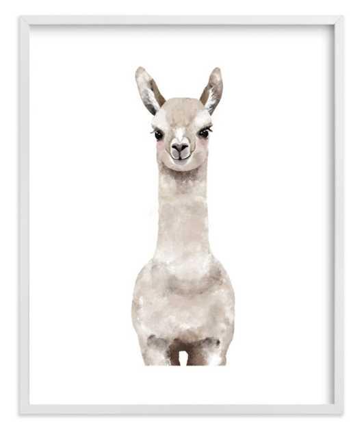 Baby Animal Llama - Minted