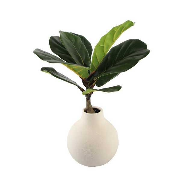 """8"""" Fiddle Leaf Fig Tree in Vase - Wayfair"""