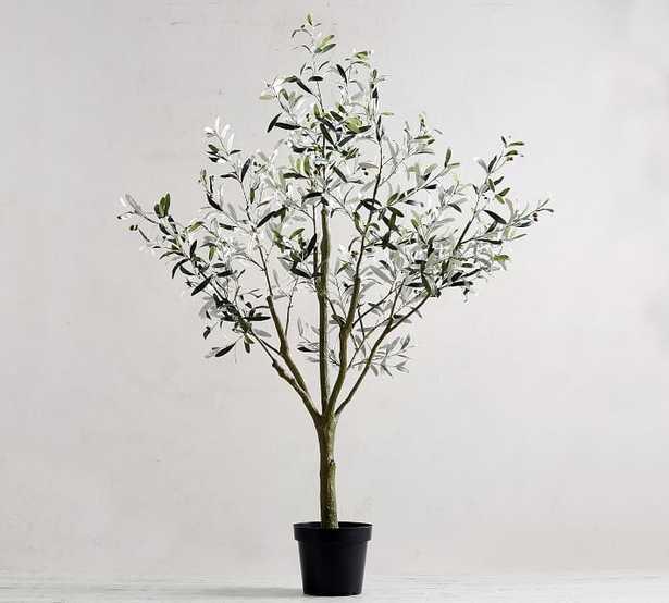 """Faux Potted Olive Tree, Large 71"""" - Pottery Barn"""