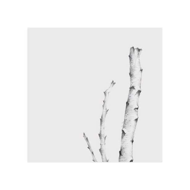 Birch - Unframed Print - Minted
