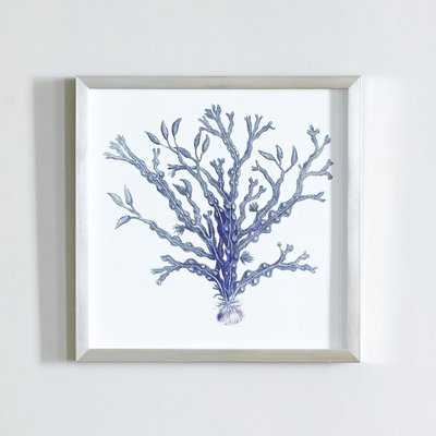 'Indigo Coral I' Shadow Box - Birch Lane