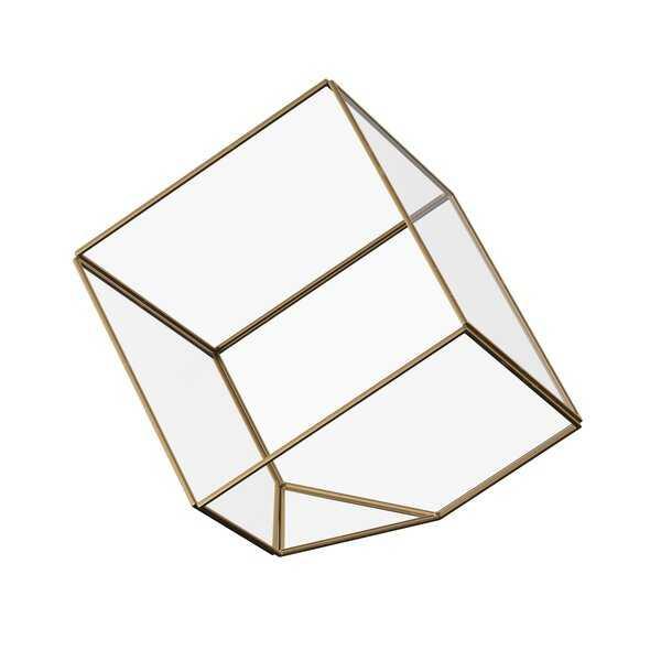 Gorton Brass Terrarium - AllModern
