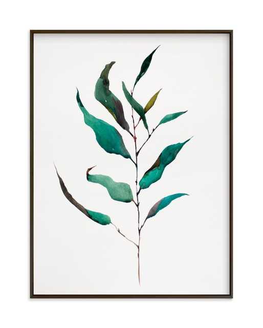 Eucalyptus Foliage // 18x24 // Matte Black Frame // Standard Border - Minted