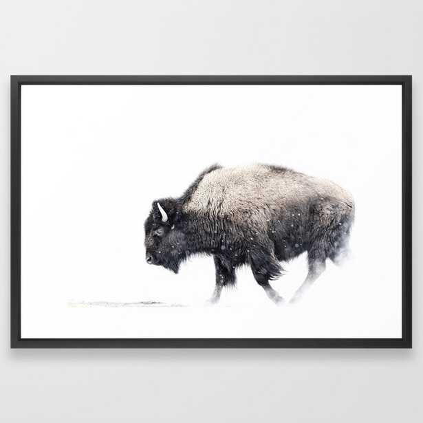 Bison in Yellowstone National Park - Society6