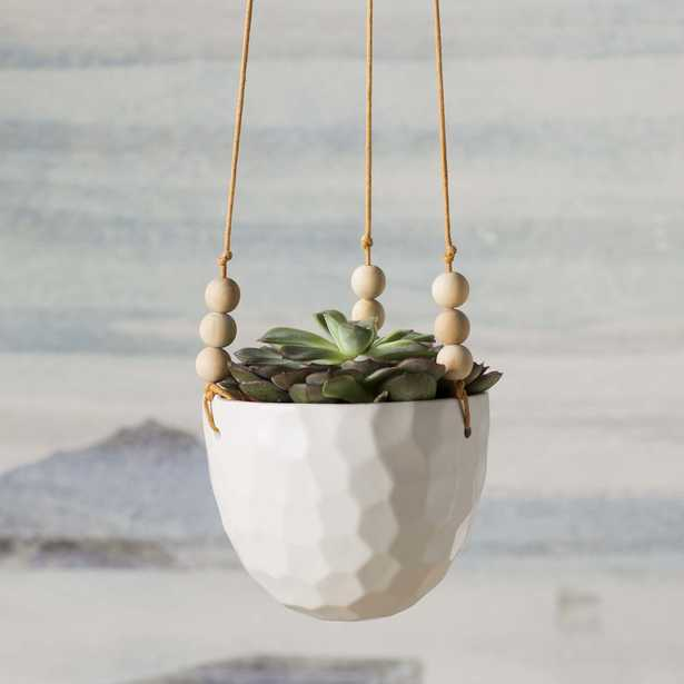 Mari Hanging Planter - Wayfair