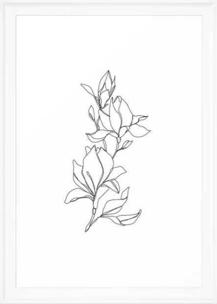 Botanical illustration line drawing - Magnolia Framed Art Print - Society6