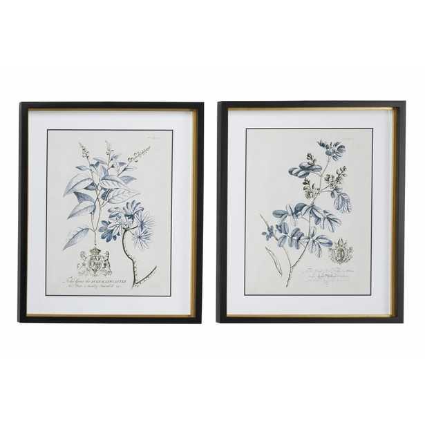 "Large Rectangular Blue Vintage Flower Illustrations Framed Wall Art | Set of 2: 20"" x 24"" Each - Wayfair"