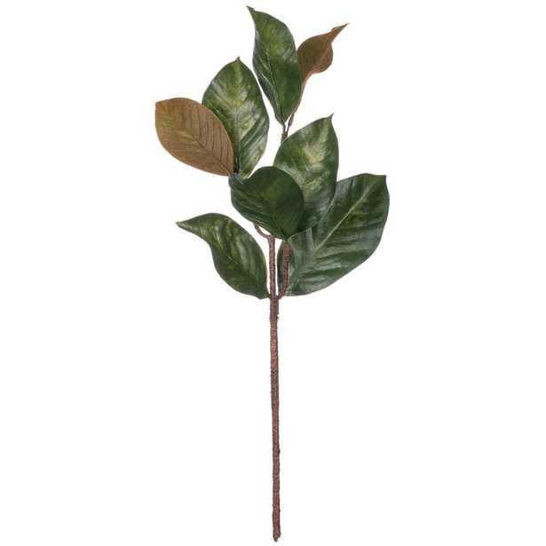 Magnolia Leaf Stem - Wayfair
