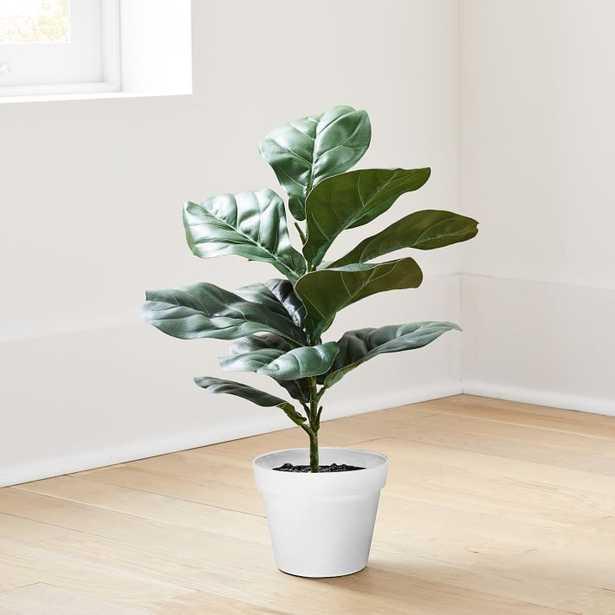 Faux Potted Fig Leaf, 2' - West Elm