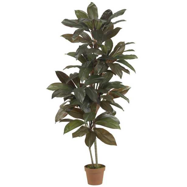 5' Cordyline Silk Plant (Real Touch) - Fiddle + Bloom