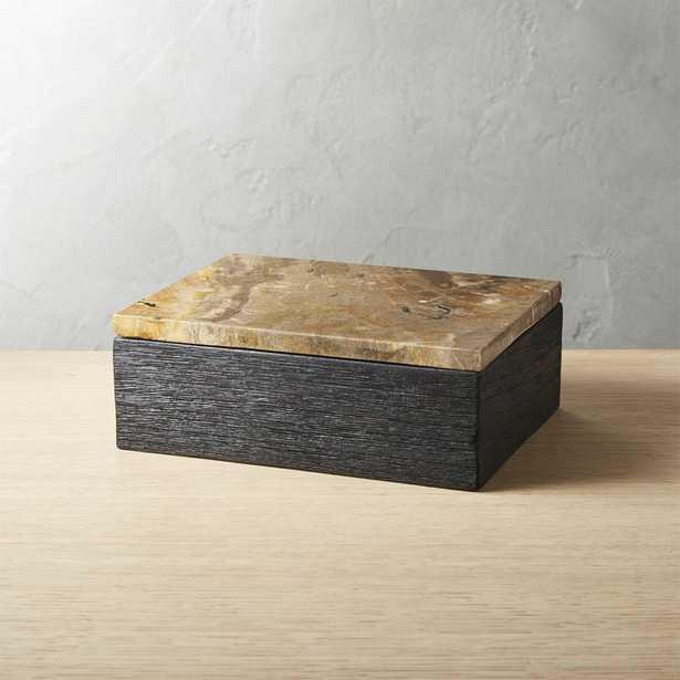 Petrified Wood Box - CB2