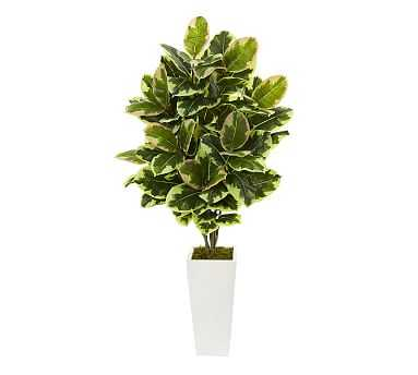 Faux Potted Variegated Rubber Leaf Plant, White Tower Vase - Pottery Barn