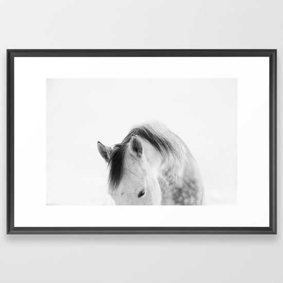 Modern Photography White Horse - Society6