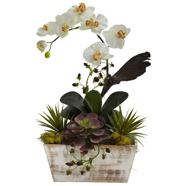 Orchid and Succulent Garden with White Wash Planter, Assorted - Home Depot