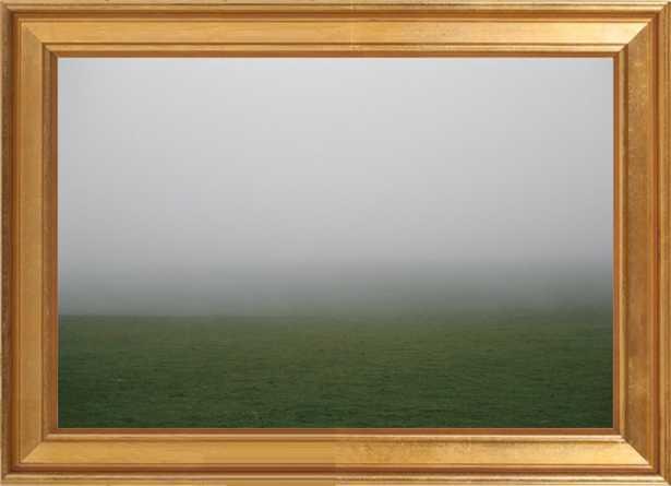 Field #5 - 14x10 - Gold leaf wood frame no matte - Artfully Walls