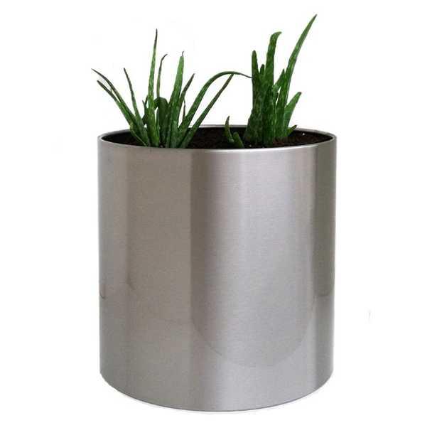 Stainless Steel Pot Planter - AllModern