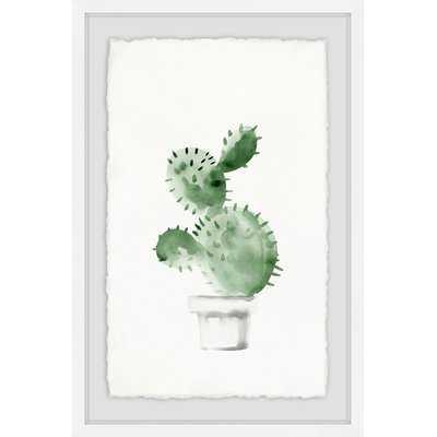 'Spiky Succulent' Framed Watercolor Painting Print - Wayfair