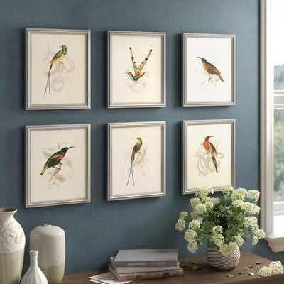 'Hummingbirds' 6 Piece Picture Frame Graphic Art Set - Birch Lane