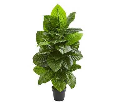 Taro Faux Plant, 4' - Pottery Barn