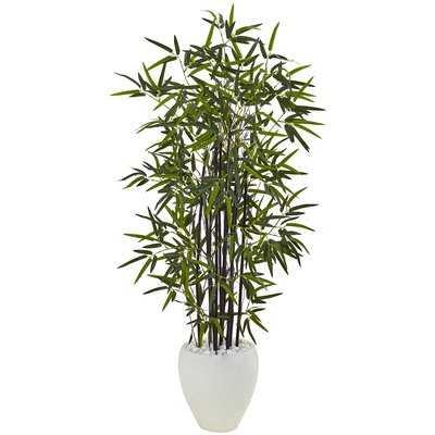 Artificial Floor Bamboo Tree in Ceramic Planter - Wayfair