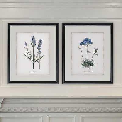 'Lavender' 2 Piece Framed Graphic Art Print Set - Birch Lane