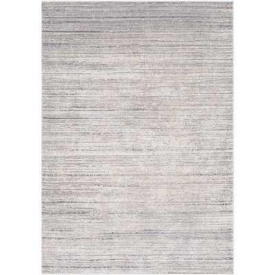 Bridgeton Gray/Gray Sleek Area Rug - AllModern