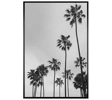 Los Angeles Palm Trees Jane Wilder 28X42 Wood Gallery Black No Mat - Pottery Barn