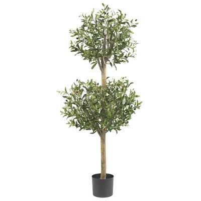Olive Tree Topiary in Pot - Birch Lane