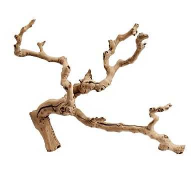 Dried Grapewood Branch, Natural, One - Pottery Barn