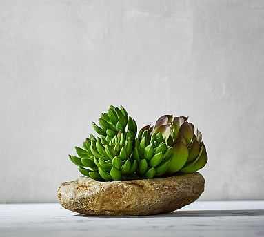 Faux Succulent & Stone Arrangement - Pottery Barn