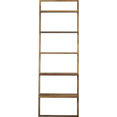 Aldo Ladder Bookcase - AllModern
