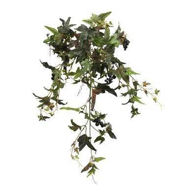Needlepoint Ivy Plant - Wayfair
