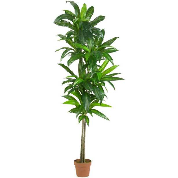 Real Touch 6 ft. Dracaena Silk Plant - Home Depot