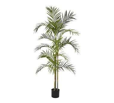 Faux Areca Palm Tree, 5' - Pottery Barn