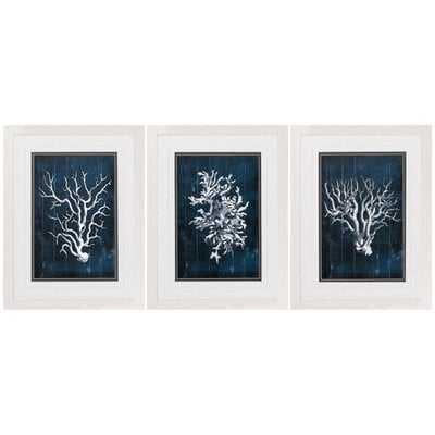 Wood Coral - 3 Piece Picture Frame Graphic Art Print Set on Paper - Birch Lane