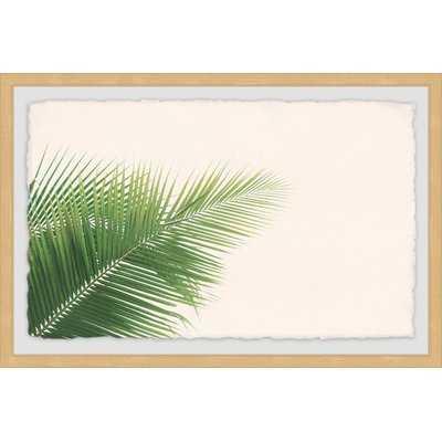 'Palm Angles' Framed Photographic Print - Wayfair