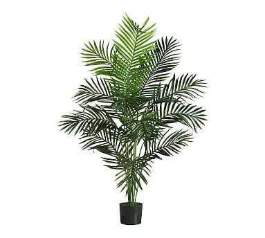 Faux Paradise Palm, 5' - Pottery Barn