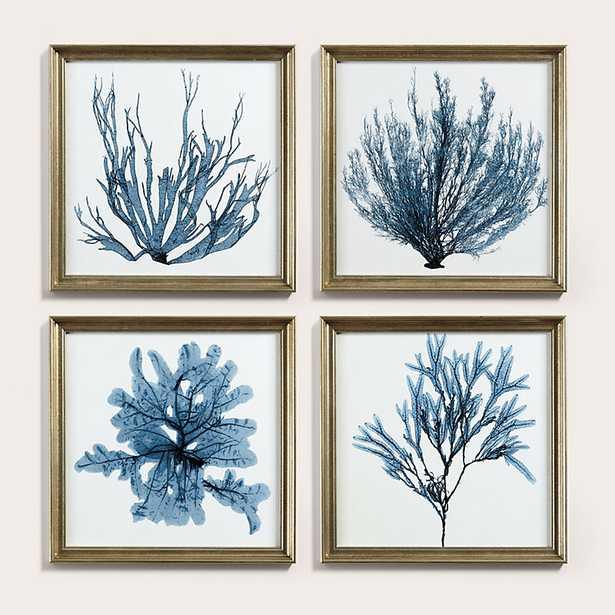 Ballard Designs Petite Blue Seaweed Art - Ballard Designs