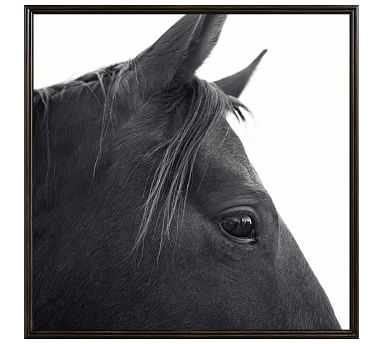 "Dark Horse in Profile Framed Print by Jennifer Meyers, 48 x 48"", Ridged Distressed Frame, Black, No Mat - Pottery Barn"