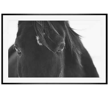 Black Horse Portrait Framed Print by Jennifer Meyers, 28 x 42 Wood Gallery, Black, Mat - Pottery Barn