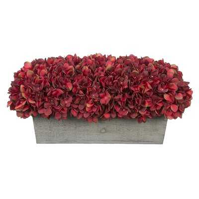 Hydrangeas Centerpiece in Planter - Birch Lane