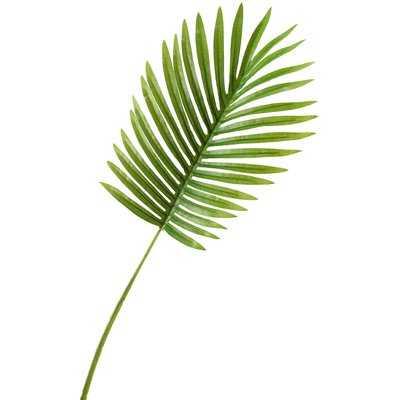 Small Hawaiian Palm Leaf Stem (Set of 3) - Wayfair