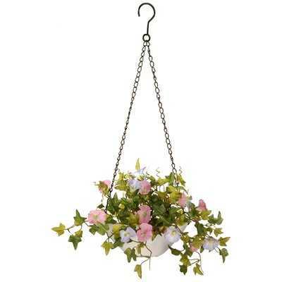 Hanging Flowering Plant in Basket - Wayfair