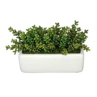 Artificial Sedum Plant in Planter - Wayfair