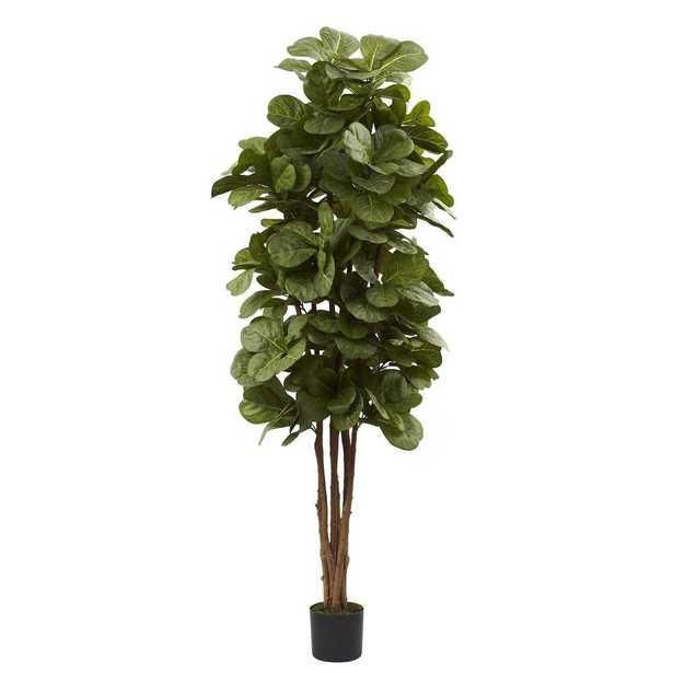 6 ft. Fiddle Leaf Fig Tree - Home Depot