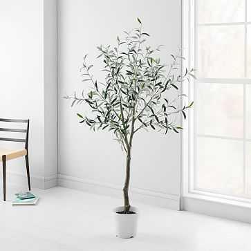 Artificial Plants, Olive Tree - West Elm